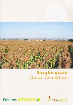 Sorgho grain - arvalis - 9782817903040 -