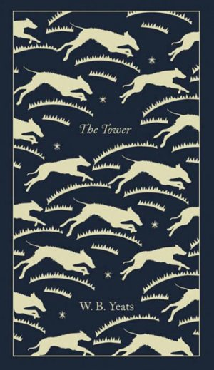 The Tower - penguin - 9780241303092 -