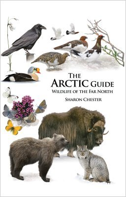 The Arctic Guide: Wildlife of the Far North - princeton university press editions - 9780691139753 -