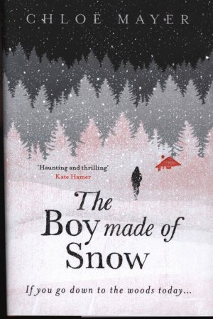 The Boy made of Snow - orion - 9781474604796 -