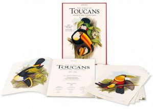 The Family of Toucans - taschen - 9783836505246 -
