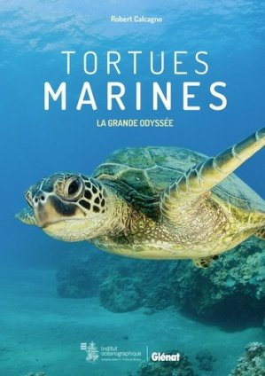 Tortues marines - glenat - 9782344024461 -