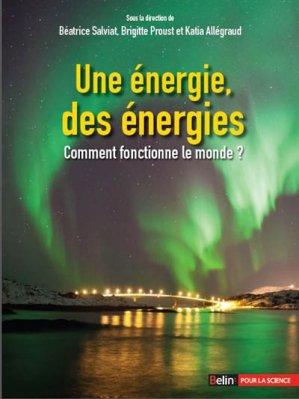 Une énergie, des énergies - belin - 9782701193533 -