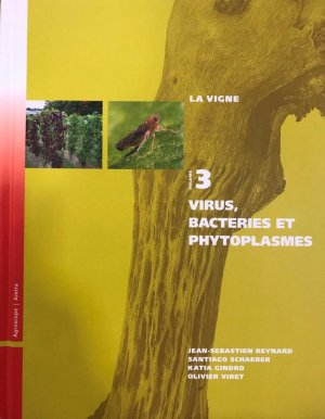 Virus, bactéries et phytoplasmes - amtra - 9783859281028 -