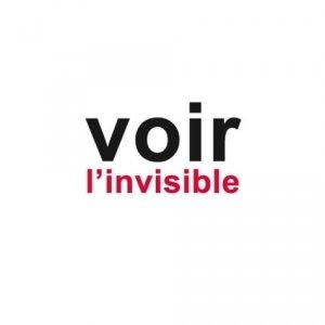 Voir l'invisible - puits fleuri - 9782867396502 -