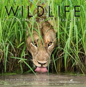 Wildlife - biotope - 9782366622171 -
