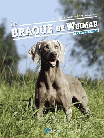 Braque de Weimar Le ancienne /édition