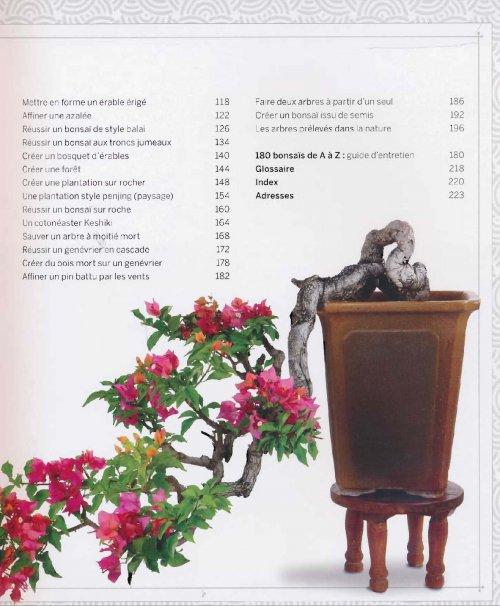 comment cr er et entretenir vos bonsa s collectif 9782035902894 larousse bonsa s. Black Bedroom Furniture Sets. Home Design Ideas
